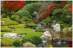 Taizō-in is well known for its two gardens. The main garden, Motonobu-no-niwa, is a traditional Japanese dry landscape garden (karesansui). A new pond garden, or yoko-en, was designed by Kinsaku Nakane in 1963-1966. The new garden is large enough for visitors to walk in.