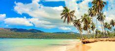 Viajar a Samaná: En este artículo te contamos 12 razones por las que debes viajar a Samaná en la República Dominicana. La zona menos conocida y más salvaje.