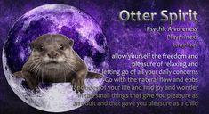 Power Animal, The Freedom, Spirit Guides, Finding Joy, Spiritual Awakening, Otters, Spirit Animal, Letting Go, Laughter