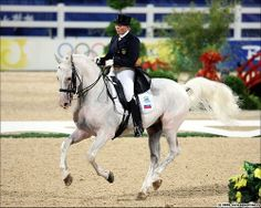 Orlov Trotter - Balagur, a rare Orlov Trotter competing in Dressage at the Olympic level!