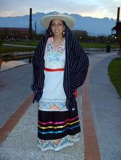 Michoacán Iguiris