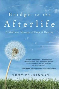Bridge to the Afterlife : A Medium's Message of Hope & Healing