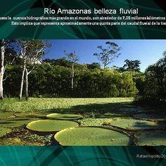 WEBSTA @ rhavila13 - Amazonas River. Posee la cuenca hidrografica más grande en el mundo. Tiene alrededor de 7.5 millones de kilómetros cuadrados. #instsgram #instagood #nature  #BeautifulNature #BeautifulLand