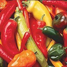 Hot pepper seeds -- salsa needs a good variety of peppers