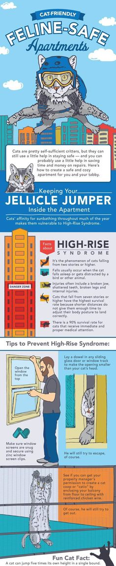 Cat Friendly Feline Safe Apartment, High-Rise Syndrome How you can secure your balcony to prevent your cat from falling.