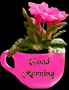 Good Morning Images For Whatsapp Good Day Images, Good Morning Images Hd, Morning Gif, Love Images, Good Morning Quotes, Good Morning My Love, Good Morning Flowers, Quotes For Whatsapp, Very Clever
