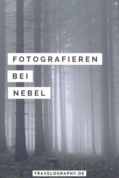 Fotografieren bei Nebel