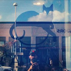 First US CAT CAFE on opening day http://ihavecat.com/2014/12/12/cat-town-cat-cafe-on-opening-day/  #cattown #cattowncafe #catcafe #oakland #firstuscatcafe #AdamWyatt