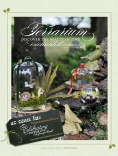 Terrarium Ideas~want to try one of these