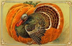 Vintage Thanksgiving Postcard | by Suzee Que