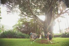 wedding under epic tree