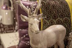 Dit rendier is niet alleen mooi als kerst decoratie, het staat op elk moment van het jaar stijlvol in een modern of landelijk interieur. Met dit interieuraccessoire kan je echt alle kanten uit. Ontdek meer op meubelen-heylen.com