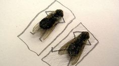 Still makes me laugh every time. Creative Art in Fly dead body - 15 Pics - Curious, Funny Photos / Pictures Creative Photos, Creative Art, Creative Ideas, Bored At Work, Insect Art, Unusual Art, Fun At Work, Funny Art, Funny Photos