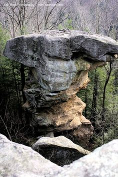The Devil's Tea Table, Little Creek Park, South Charleston, WV.  When I roamed this guy was deep in the woods and nobody knew about it.