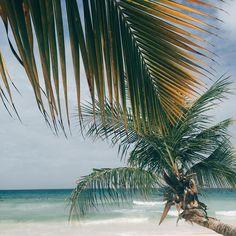 Take us there! Wanderlust Wednesday: St. Lawrence Gap, Barbados  #wanderlustwednesday #travel #beach #sun #sand #ocean #vacation #beautifuldestinations #wanderlust #takemeback #palmtrees #loveit #summer #cntraveler  #SatyaJewelry #DesignedForTheJourney  by: @cristina_no_h