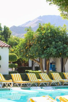 Carrie Bradshaw Lied: Palm Springs