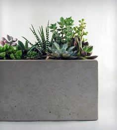 A simple, minimalist design and classic concrete structure. The planter also has two drainage holes. The piece is covered with natural looking clear sealer. Felt pads included.