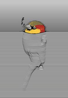 Meu Pássaro de Bolso · Studio yurilobo · Posters · R$85,00
