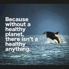 To Save Planet Earth we must first transform our relationship with nature. See all life as Sentient and Intelligent. Save Planet Earth, Save Our Earth, Save The Planet, Beatles Songs, Save Mother Earth, Mother Nature, Environmental Issues, Animal Rights, Global Warming