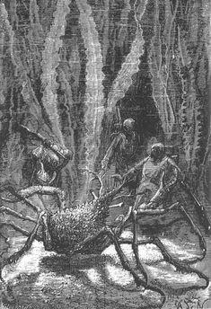 The Illustrated Jules Verne (1866-69) Vingt mille lieues sous les mers  illustrations by Alphonse de Neuville and Édouard Riou