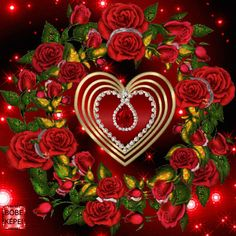 Beautiful Love Pictures, Beautiful Gif, Beautiful Roses, Beautiful Butterflies, Flowers Gif, Beautiful Bouquet Of Flowers, Beautiful Flowers Wallpapers, Pretty Wallpapers, Heart Wallpaper