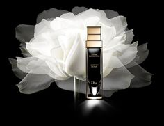 Olivier Arnaud still life photographer x Dior perfume Giorgio Armani, Perfume Versace, Perfume Calvin Klein, Cosmetics & Fragrance, Best Eye Cream, Best Eyeliner, Perfume Making, Skin Care, Beauty