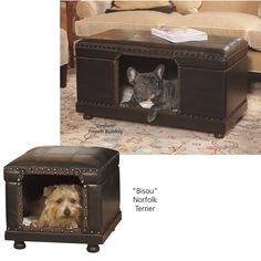 Decorator Ottoman Bed - Dog Beds, Dog Harnesses and Collars, Dog Clothes and Gifts for Dog Lovers | In The Company Of Dogs