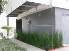 Cement Fiber Board panels, I like this for a modern siding solution and it is supposedly pretty inexpensive!
