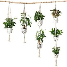 Roll over image to zoom in                Eloka 4 Pack Macrame Plant Hangers, Different Tiers, Handmade Cotton Rope Hanging Planters Set Flower Pot Holders Stand, for Indoor Outdoor Boho Home Decor Hanging Planters, Hanging Baskets, Macrame Plant Hangers, Flower Pots, Flowers, Macrame Cord, Cotton Rope, Pot Holders, Indoor Outdoor