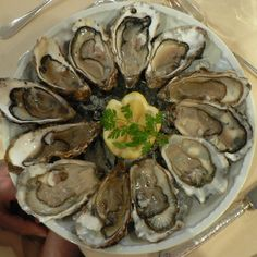 Oysters in circle on plate.