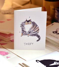 Tabby Cat-