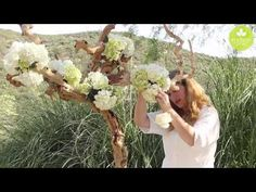 Blog of Mayesh Wholesale Florist - Inspired Floral Design with Beth O'Reilly: Driftwood Tree Tablescape