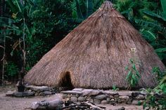 Thatched roof hut in mountain village.