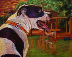 """""""Good Day on the Boat"""" & other Pawtrait prints now available, portion of sales goes to Pet Rescue by Judy :D click image to go to site"""