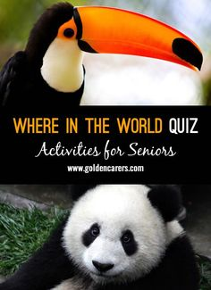 Where in the world would you most likely find these things? A fun quiz for the elderly!