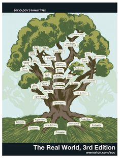 Sociology Family Tree | via @Norton Soc