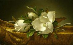 Magnolias On Gold Velvet Cloth - Martin Johnson Heade