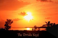 Florida Keys, #bigpinekey #keywest