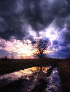 Inner Turbulence VII - Photography by Zsolt Zsigmond realitydream.hu #sunset #tree #reflection