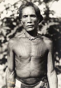 "indigenouswisdom:  ""Bontoc Warrior  The Igorot are a people native to the mountains of Luzon, Philippines. The Igarot can be divided into six ethnolinguistic groups; Bontoc, Ibaloi, Isneg, Kalinga, Ifugao and Kankanaey.  Igorot territory was once..."