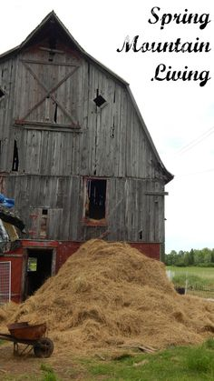 Taking hay out of hay loft in barn - cutting their own hay - Spring Mountain Living