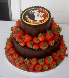 FSU grooms cake! If my future groom is not a fan he's just gonna have to deal with it lol