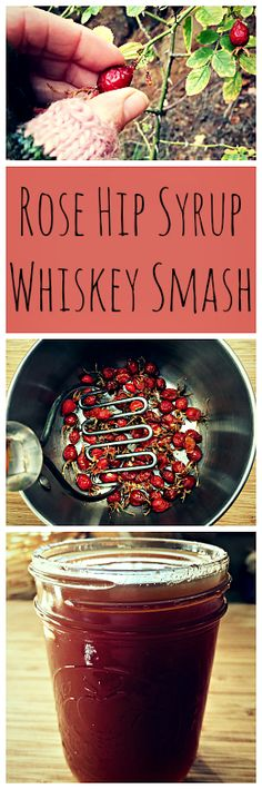 How to make rose hip syrup and a recipe for a rose hip whiskey smash. A perfect holiday drink!