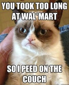 Another collection of funny Grumpy Cat memes - Mommy Has A Potty Mouth#