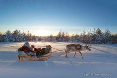 Joulupukki harjoittaa poroaan Rovaniemellä