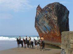 Explore Ship Wrecks with Wild Coast Horse Trails
