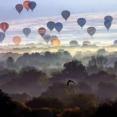 Not only a gorgeous view and picture, but love the hot air balloons. When I was a little girl, before bed my dad would tell me stories of going on hot air balloon rides together Air Balloon Rides, Hot Air Balloon, Air Ballon, Balloon Race, Flying Balloon, Pretty Pictures, Cool Photos, Foto One, Air Balloon Festival