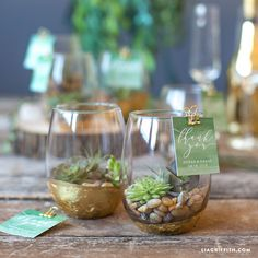 Watch Your Love Grow with These DIY Mini Terrarium Wedding Favors - Creative Wedding Favors, Inexpensive Wedding Favors, Elegant Wedding Favors, Edible Wedding Favors, Beach Wedding Favors, Wedding Favors For Guests, Bridal Shower Favors, Wedding Centerpieces, Wedding Gifts