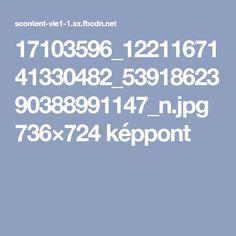 17103596_1221167141330482_5391862390388991147_n.jpg 736×724 képpont