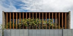 POA | Bernardes Arquitetura E Design, Windows, Display, Architecture, Single Family, House, Plants, Life, Space